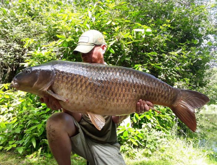 The Pretty One for Andy Lennon! 50lb 1oz June 20th 2018
